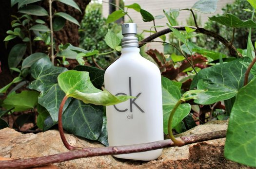 Summer Fragrances - CK All