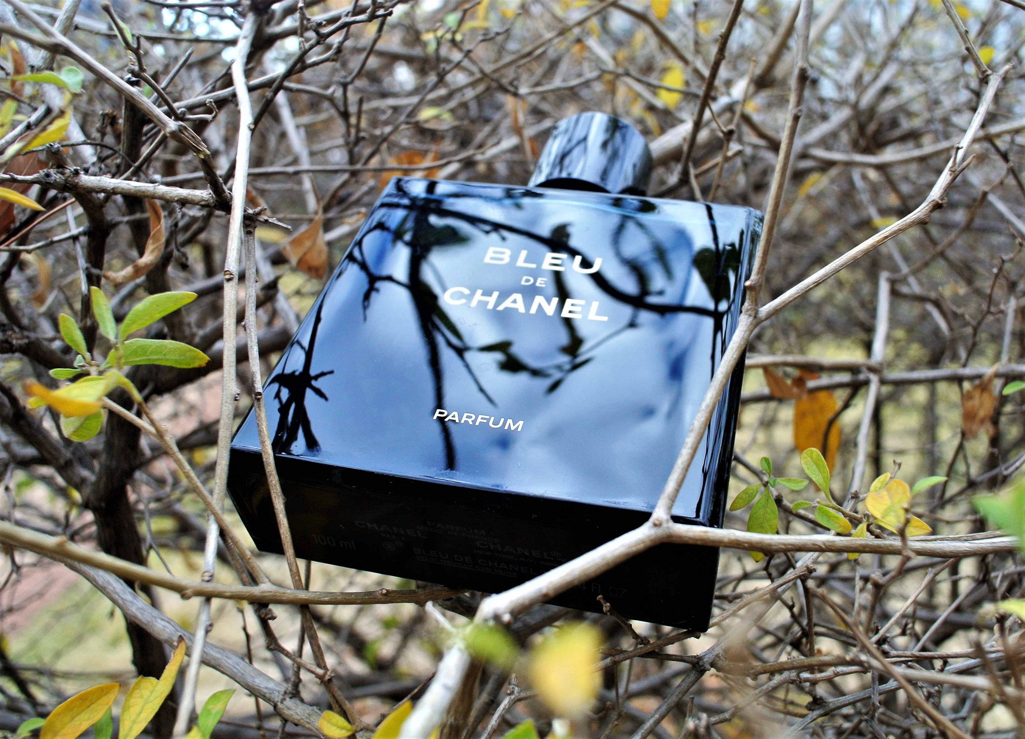 Bleu De Chanel Parfum Review What The New Version Has To Offer